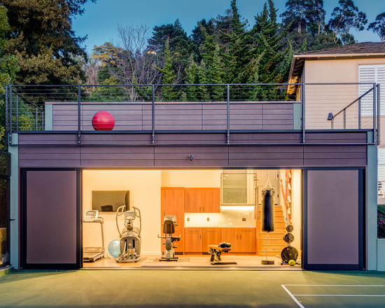 2d51c12a03435243_1432-w550-h440-b0-p0-contemporary-home-gym