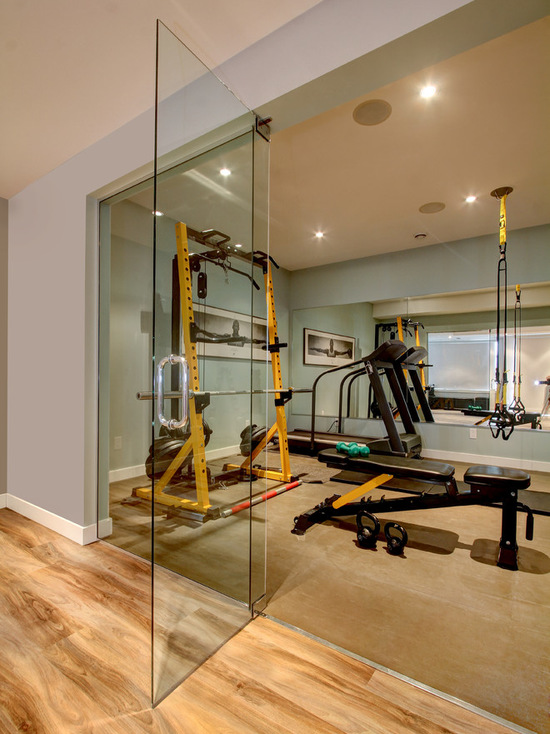 3421c321046a6e8c_1094-w550-h734-b0-p0-contemporary-home-gym