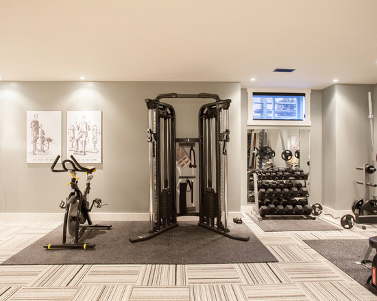 d231d629027a4048_1669-w550-h440-b0-p0-contemporary-home-gym