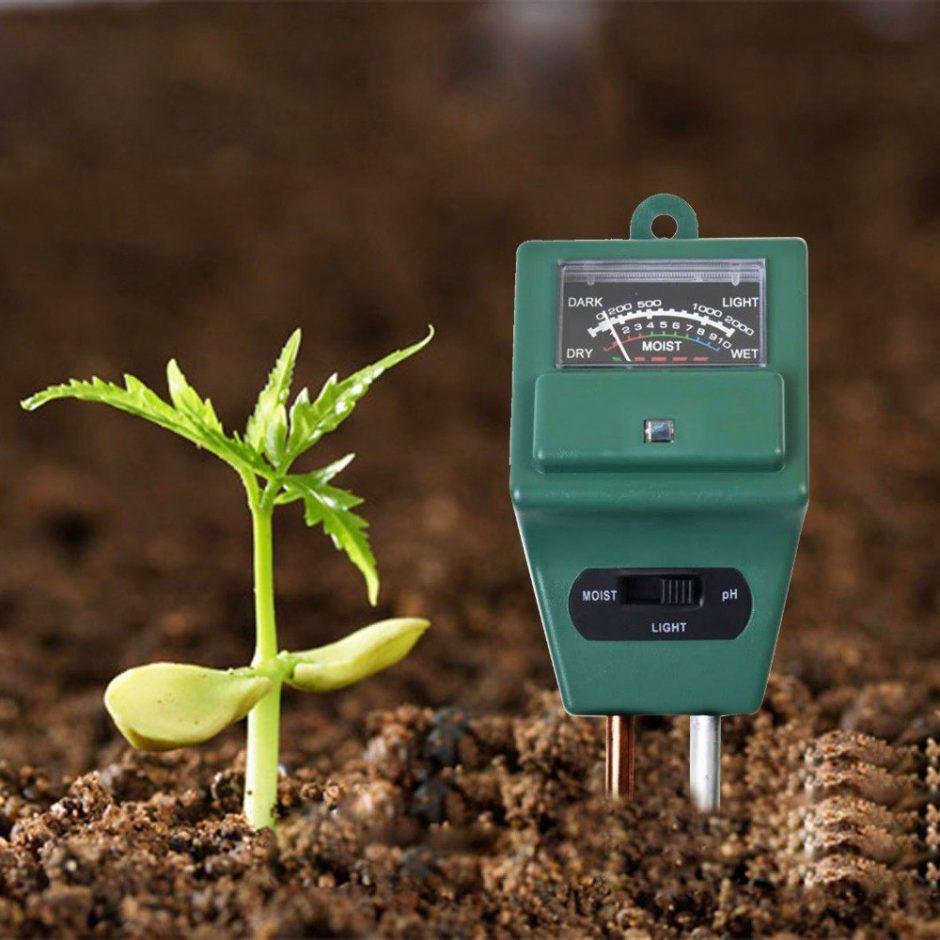 Чем повысить кислотность почвы в домашних условиях Как повысить плодородие почвы