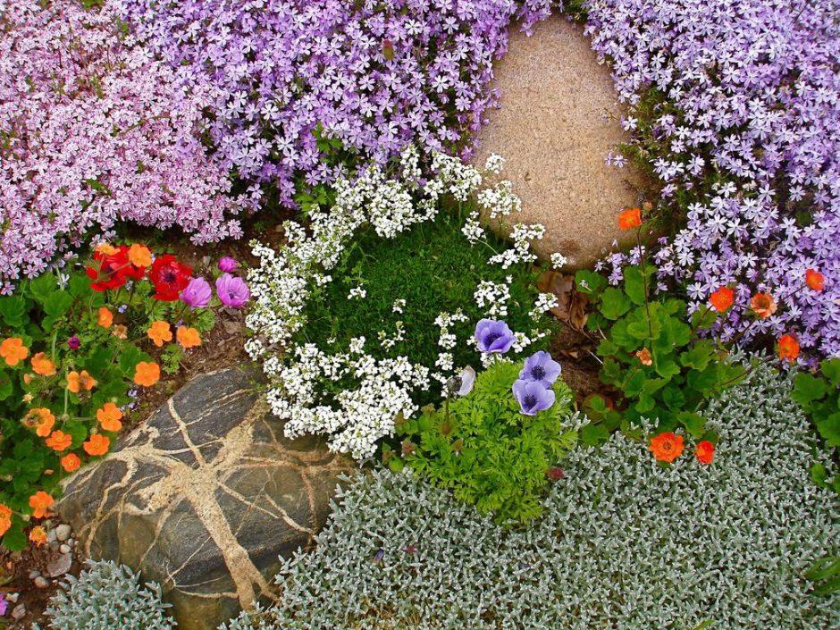 К чему снится сажать цветы на клумбе 9