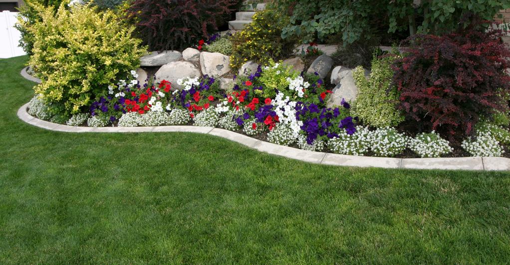 Фото дизайн цветников на даче