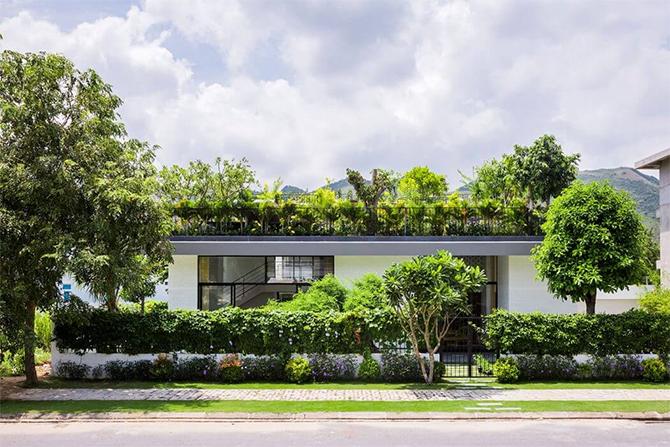 Дом с садом на крыше