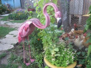 flamingo-backyard-decor-718x539