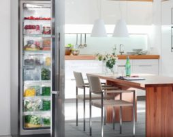 Выбор морозильной камеры для дома