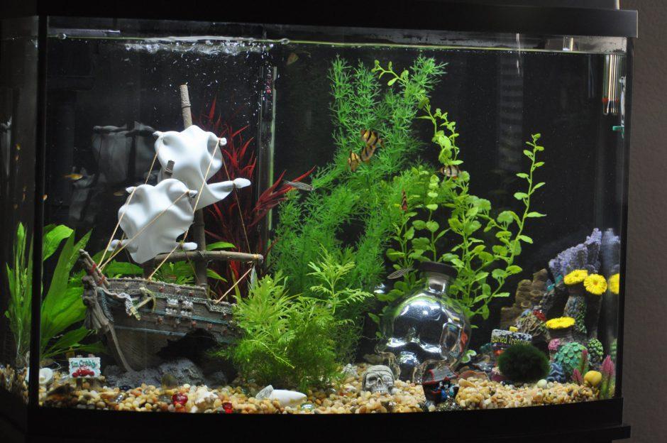 Декор для аквариумов казань