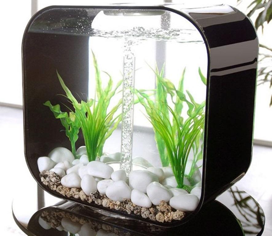 Макет аквариум картинки настоящее время