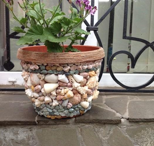 лайфхаки для домашних цветов
