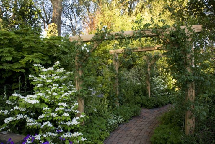 садовая пергола