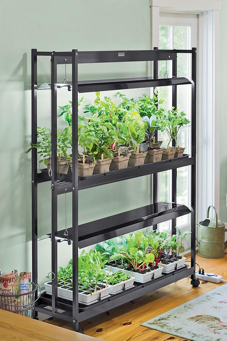 Стеллажи для растений с подсветкой своими руками