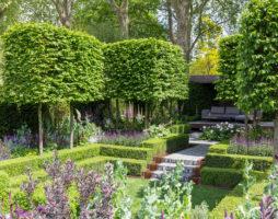 Большие возможности дизайна маленького садового участка