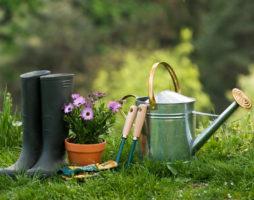 Список садовых инструментов для сада и огорода