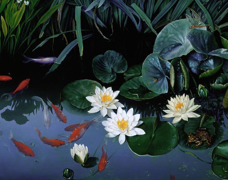 Нимфея (кувшинка) посадка и уход в пруду или аквариуме