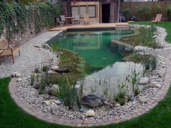 дизайн садового участка 6 соток