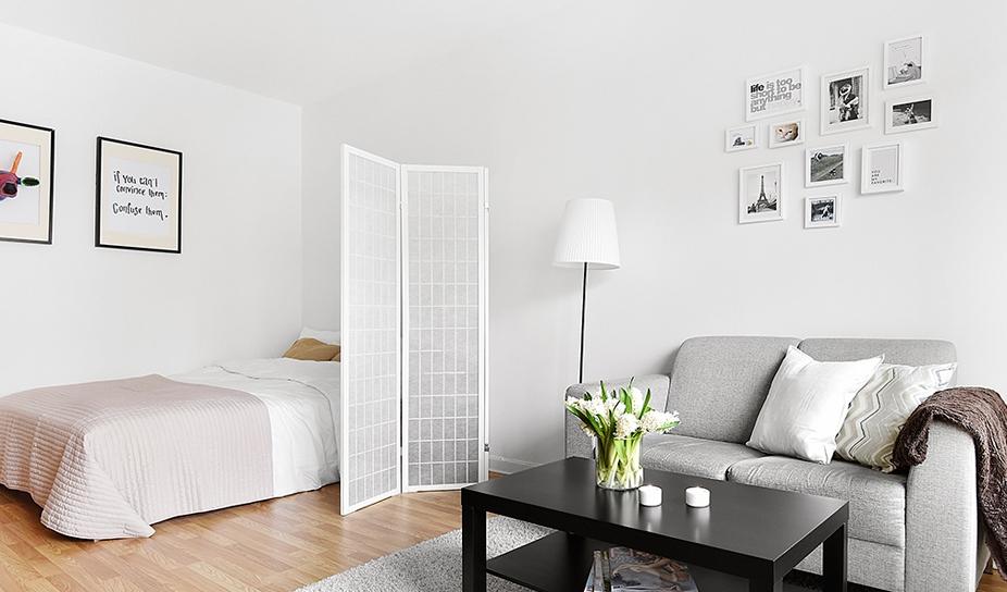 ширма в однокомнатной квартире фото средостения