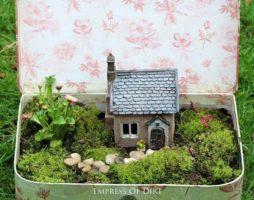 Мини сад в горшке своими руками с фото